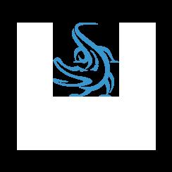 Tampa Constructors Corp.